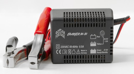 FORCEAGE Charger 24-2С